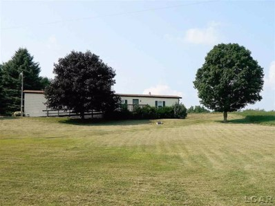 11480 North Adams Road, Wheatland Twp, MI 49262 - MLS#: 56031357314