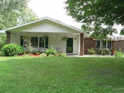 419 Wildwood Circle, Tecumseh Twp, MI 49286 - MLS#: 56031357744