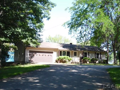 503 Park Ln, Cambridge Twp, MI 49230 - MLS#: 56031357917