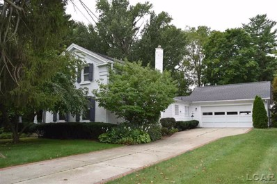 113 N Scott St, Adrian, MI 49221 - MLS#: 56031359544