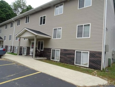 203 Kehoe UNIT S5, Clinton, MI 49236 - MLS#: 56031360525