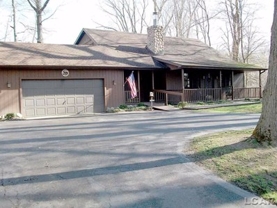 99 Wildwood Circle, Tecumseh Twp, MI 49286 - MLS#: 56031366406