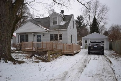 3320 Treat Hwy., Adrian Twp, MI 49221 - MLS#: 56031369059