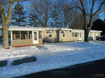 201 Pine Street, Cambridge Twp, MI 49230 - MLS#: 56031371768