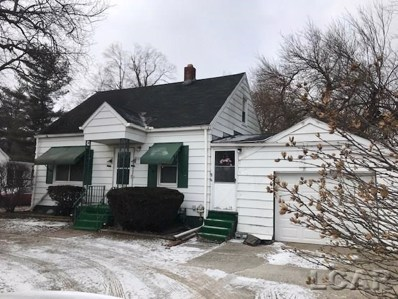 3250 Treat, Madison Twp, MI 49221 - MLS#: 56031372270