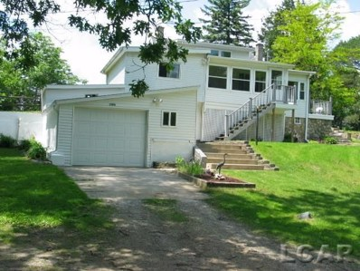 1006 Lakeview Dr., Manchester Twp, MI 49287 - #: 56031388079