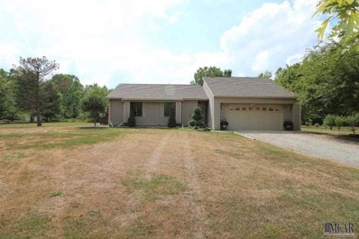 24040 Otter Road, New Boston, MI 48164 - MLS#: 57003452763