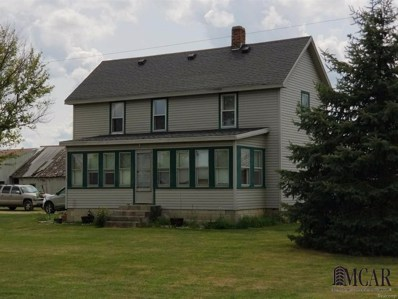 11168 Lipp Hwy, Update, MI 49267 - MLS#: 57021482703