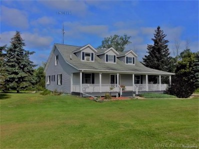 6734 Black River Rd, Worth Twp, MI 48422 - MLS#: 58031329914