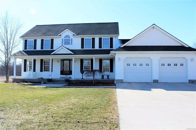 65641 Haven Ridge Rd, Lenox, MI 48050 - MLS#: 58031341383