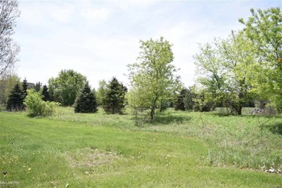 Gould Road, Bruce Twp, MI 48065 - MLS#: 58031347948