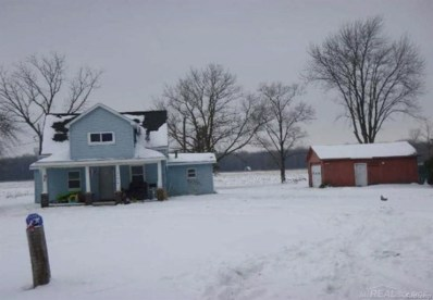 10640 Elms Rd, Birch Run, MI 48415 - MLS#: 58031349920