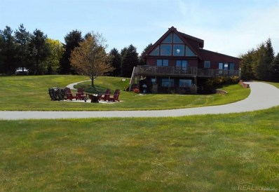 4440 Lakeshore Rd, Forester Twp, MI 48427 - MLS#: 58031352695