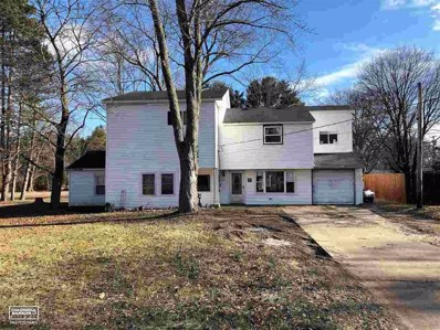 2620 Michigan, Port Huron Twp, MI 48060 - MLS#: 58031369060