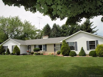 6335 Townsend, Sanilac Twp, MI 48401 - MLS#: 58031385963
