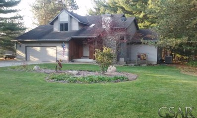 7196 White Pine Dr., Woodhull Twp, MI 48872 - MLS#: 60031351253