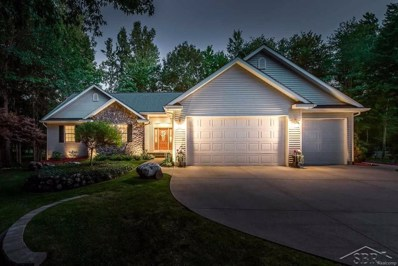 16171 Northern Pintail Drive, Richland Twp, MI 48626 - MLS#: 61031352268