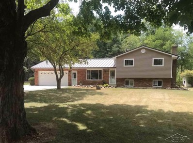 11070 Lange, Birch Run Twp, MI 48415 - MLS#: 61031354011