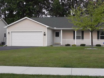13 Pondview, Thomas Twp, MI 48609 - MLS#: 61031357737