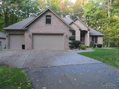 16202 Blue Teal Trail, Richland Twp, MI 48626 - MLS#: 61031362478