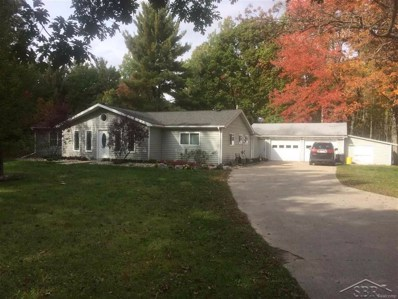 12560 Baumgartner, Swan Creek Twp, MI 48655 - MLS#: 61031364263