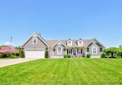 10372 Dice, Thomas Twp, MI 48623 - MLS#: 61031381591