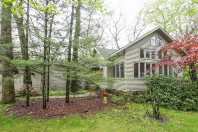 36 Pontiac Trail, New Buffalo, MI 49117 - #: 18022354