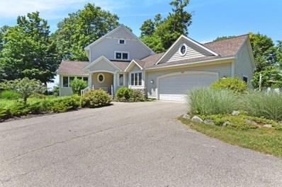 7193 Cottage Lane, South Haven, MI 49090 - #: 18032214