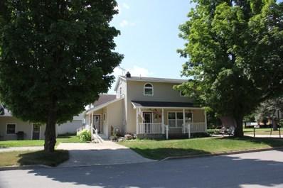 319 W Grand Traverse Street, Big Rapids, MI 49307 - #: 18034866