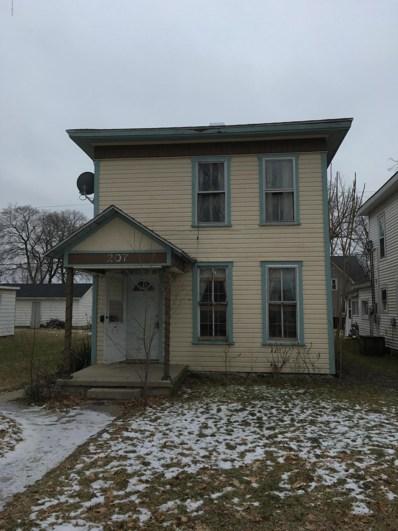 207 N Third Avenue, Big Rapids, MI 49307 - #: 19004408