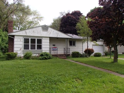 207 Ford Road, Albion, MI 49224 - #: 19011103