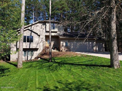 1788 Pine Hill, Hastings, MI 49058 - #: 19014619