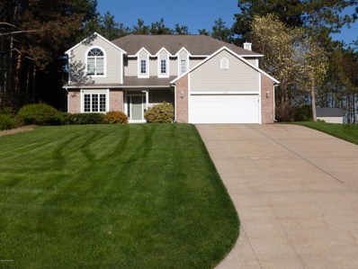 13360 Fox Ridge Court, Grand Haven, MI 49417 - #: 19022143