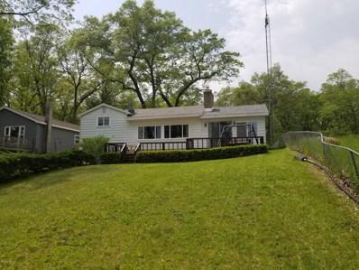 52 S Emerson Lake Drive, Branch, MI 49402 - #: 19024403
