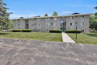 2581 Ridgecroft Drive SE UNIT 102, Kentwood, MI 49546 - #: 19028854