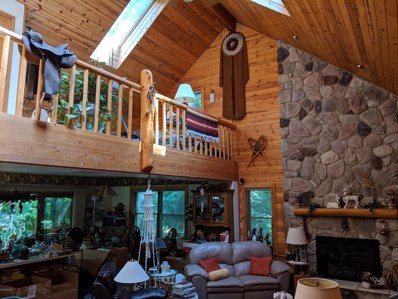 4054 Choctaw Trail, New Buffalo, MI 49117 - #: 19035983