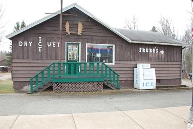 1810 E Sheridan St, Ely, MN 55731 - MLS#: 6028324