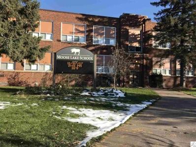 433 Birch Dr, Moose Lake, MN 55767 - MLS#: 6032285
