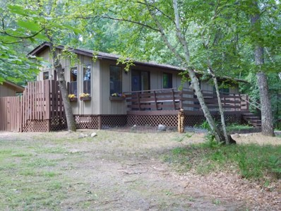 3629 Deer Lodge Drive, Danbury, WI 54830 - MLS#: 4733869