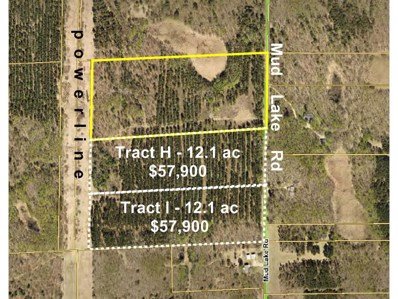 Tractg Mud Lake Road, Lake Edward Twp, MN 56468 - MLS#: 4804654