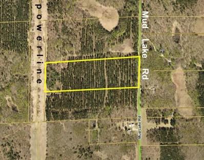 Tracth Mud Lake Road, Lake Edward Twp, MN 56468 - MLS#: 4804656