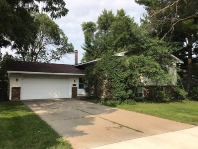 1197 Brighton Place, Saint Paul, MN 55106 - MLS#: 4871613