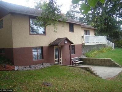 34213 Lower Spunk Lane, Avon, MN 56310 - #: 4876709