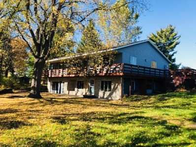 13767 County Road 3, Clear Lake, MN 55319 - MLS#: 4880787