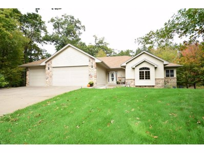 3859 162nd Avenue NE, Ham Lake, MN 55304 - MLS#: 4881039