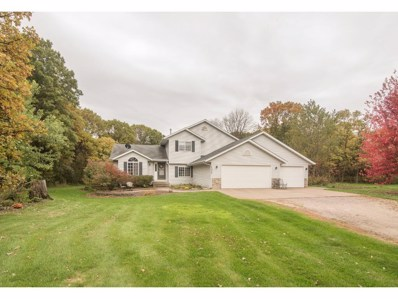 13417 43rd Street, Clear Lake, MN 55319 - MLS#: 4882713
