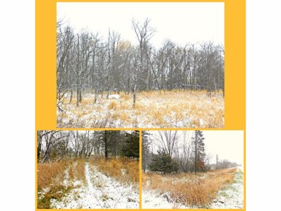 Tbd 48th Ave, Flensburg, MN 56328 - MLS#: 4888906