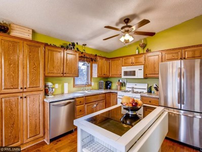 2436 136th Lane NW, Andover, MN 55304 - MLS#: 4892002
