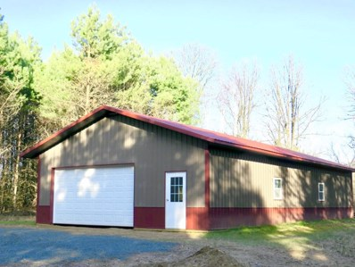 794 Horse Lake Lane Street, Osceola, WI 54009 - MLS#: 4894627