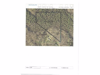 Tbd 24th St Or County Rd 2, Pine River Twp, MN 56474 - MLS#: 4903473